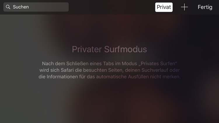 Privater Surfmodus