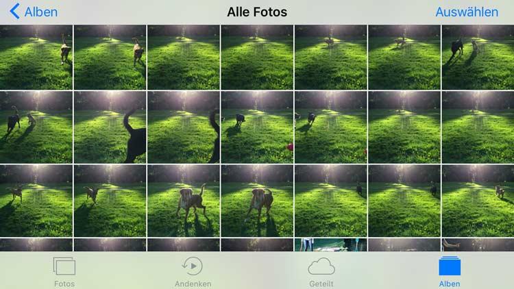 Viele Smartphone Fotos machen - und später aussortieren
