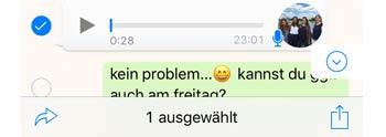 WhatsApp Sprachnachricht in Text umwandeln