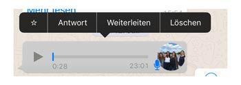 WhatsApp Sprachnachricht teilen & in text umwandeln